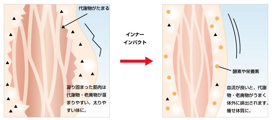 インナーインパクト脂肪イメージ画